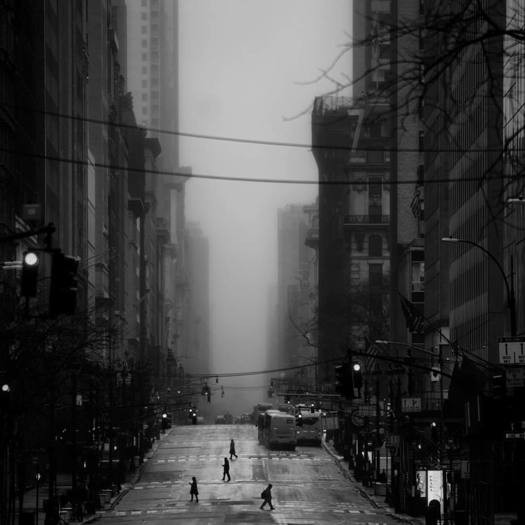 PHIL PENMAN, 5th Avenue, New York, 2020