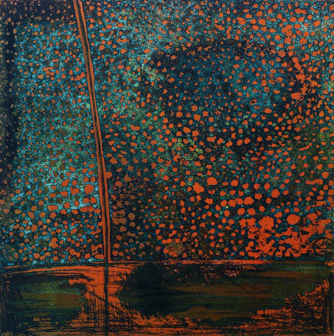 Sarah Mander, Boneyard 6, etching