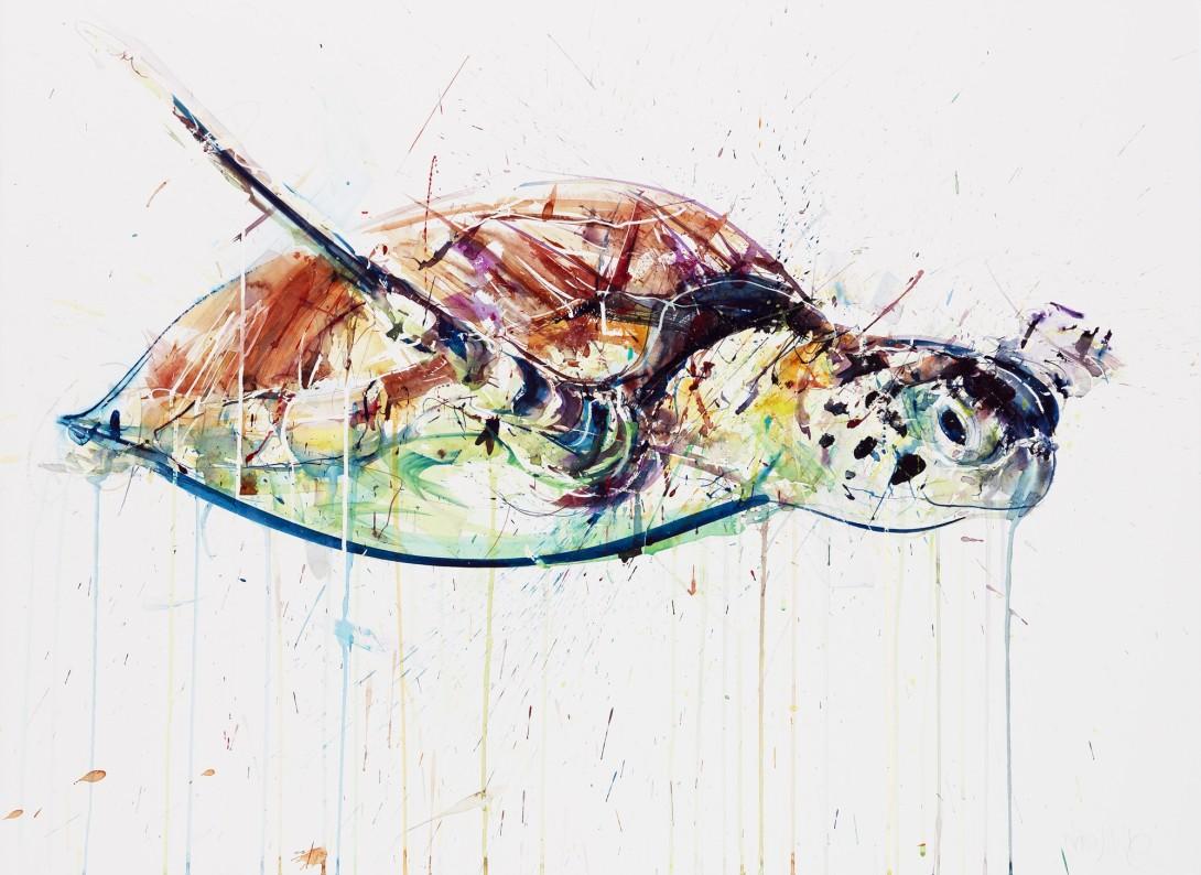 Sea Turtle IV