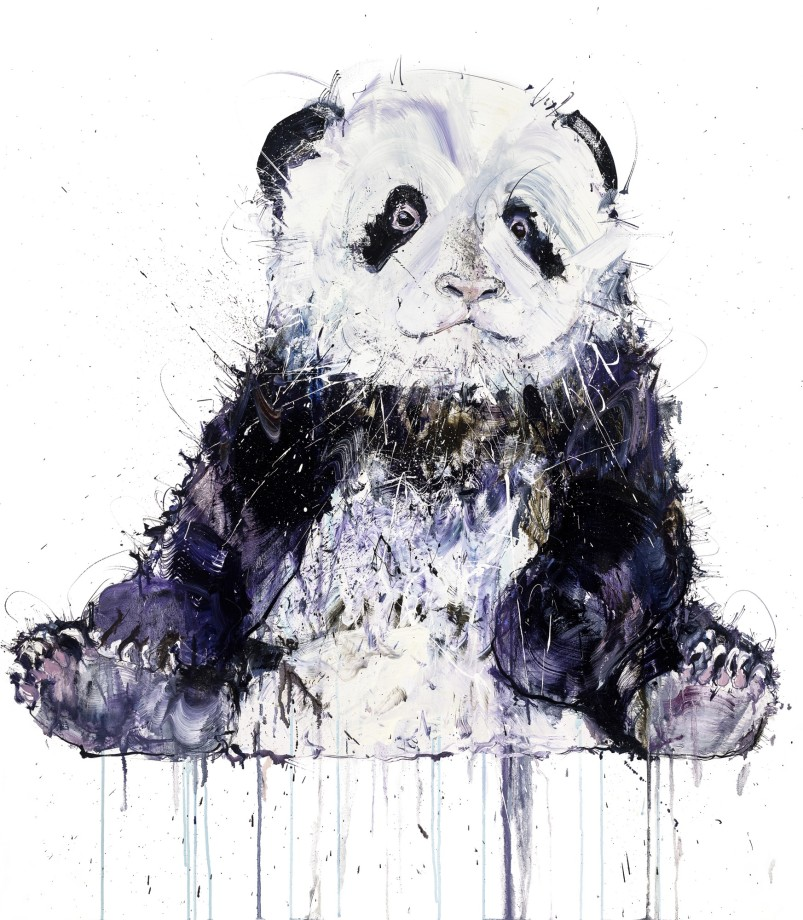 Young Panda II