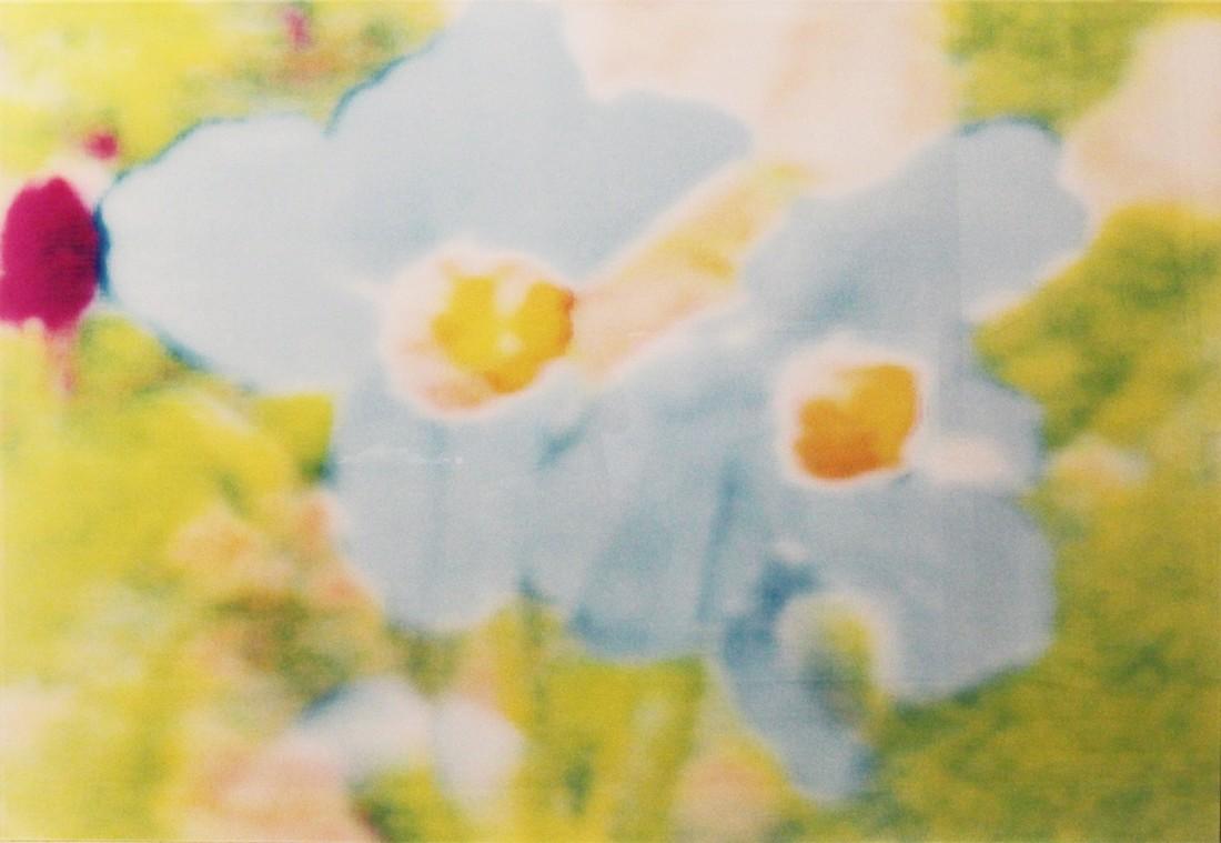 Annelies Štrba, From Dawa An II, Blue Flowers on Green Background, 2001