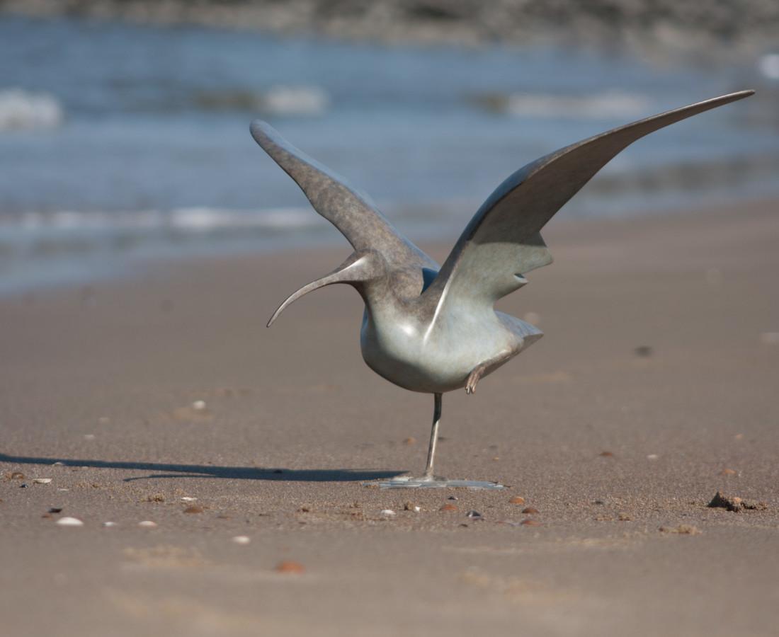 Mark Dedrie, Wulp vleugels open, 2008