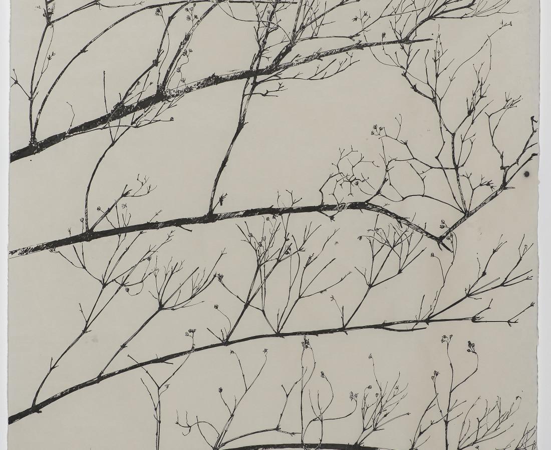 Sarah Horowitz, Winter Branches, 2018