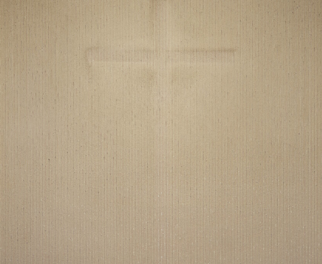 Brigitte Niedermair, Dust (VI), 2007