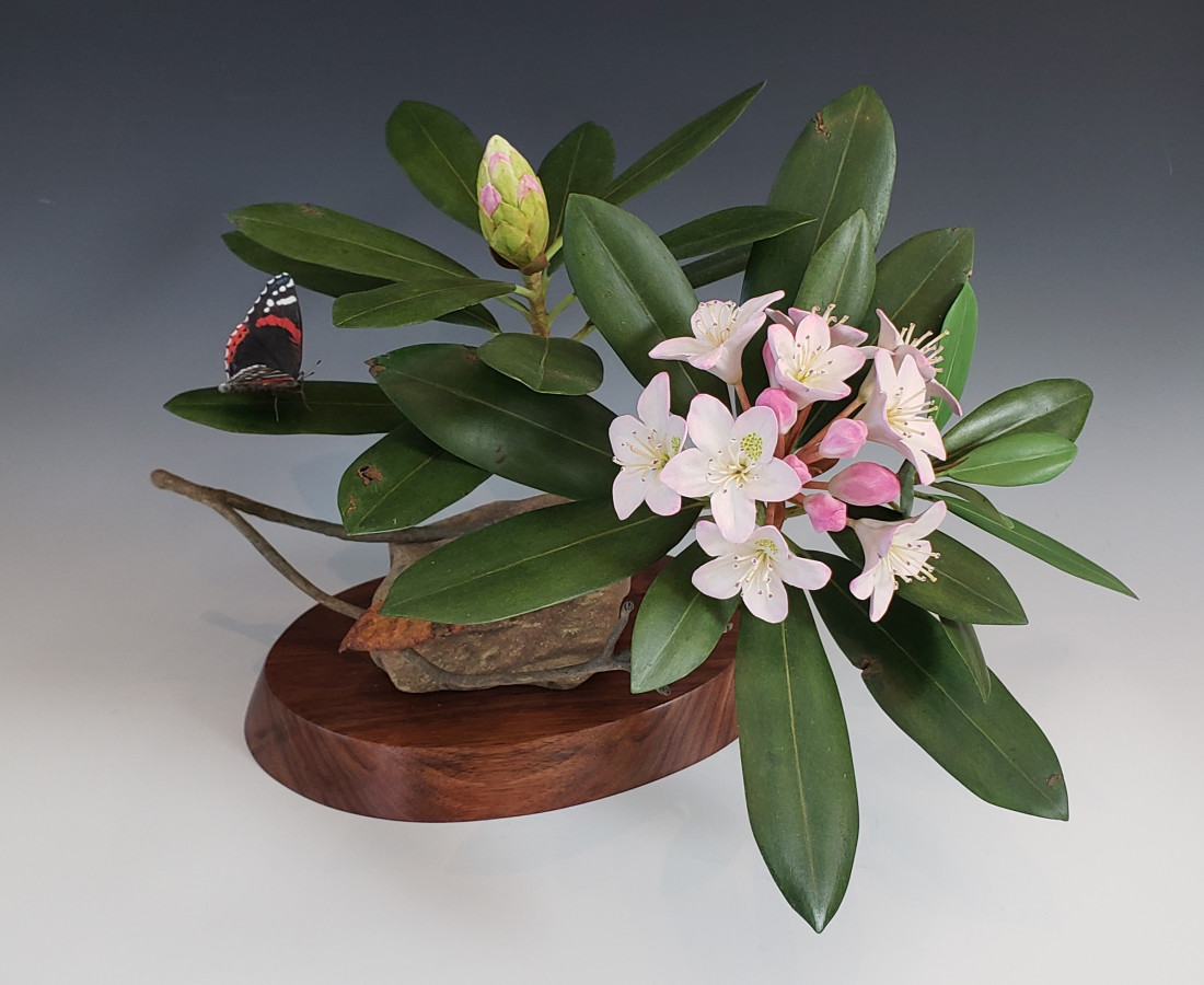 Jim Sams, Rosebay Rhododendron with Red Admiral Butterfly