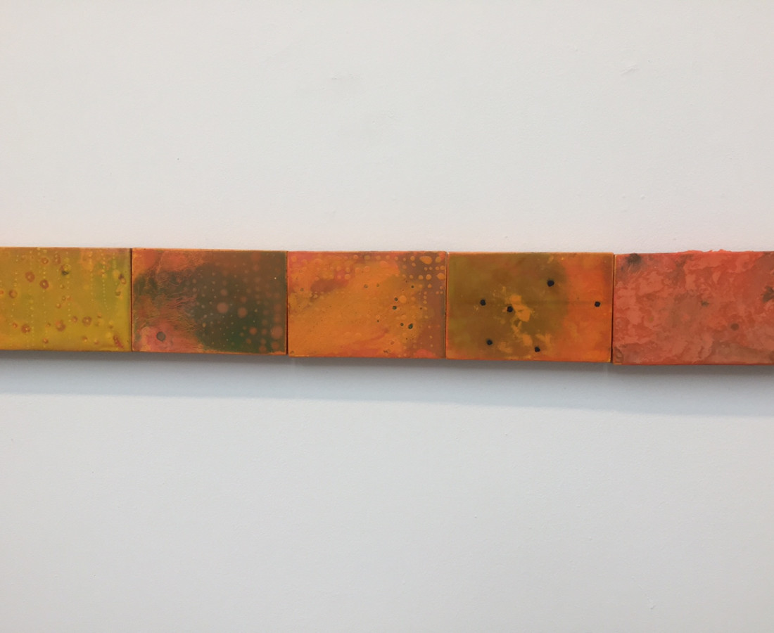 Cléa van der Grijn, Marigold Fields V