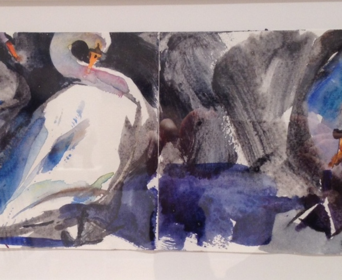 John Short, Sketchbook spread, Swans, Bray Harbour