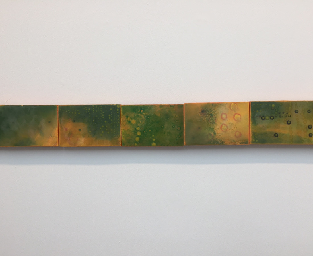 Cléa van der Grijn, Marigold Felds III