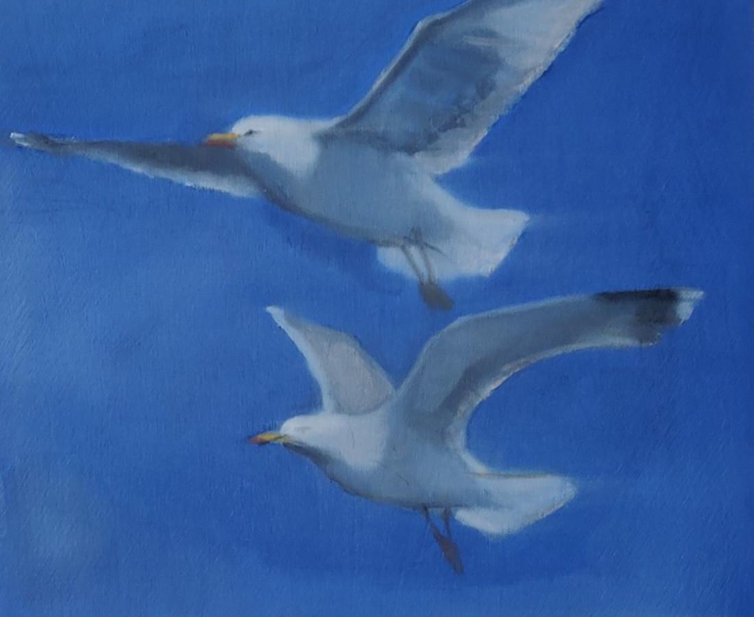 Helen O'Sullivan-Tyrrell, Seagulls in Flight II