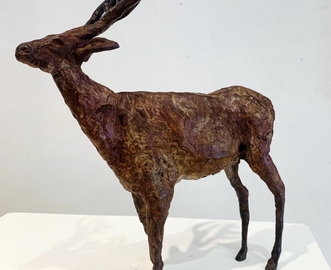 Cheryl Brown, Deer II