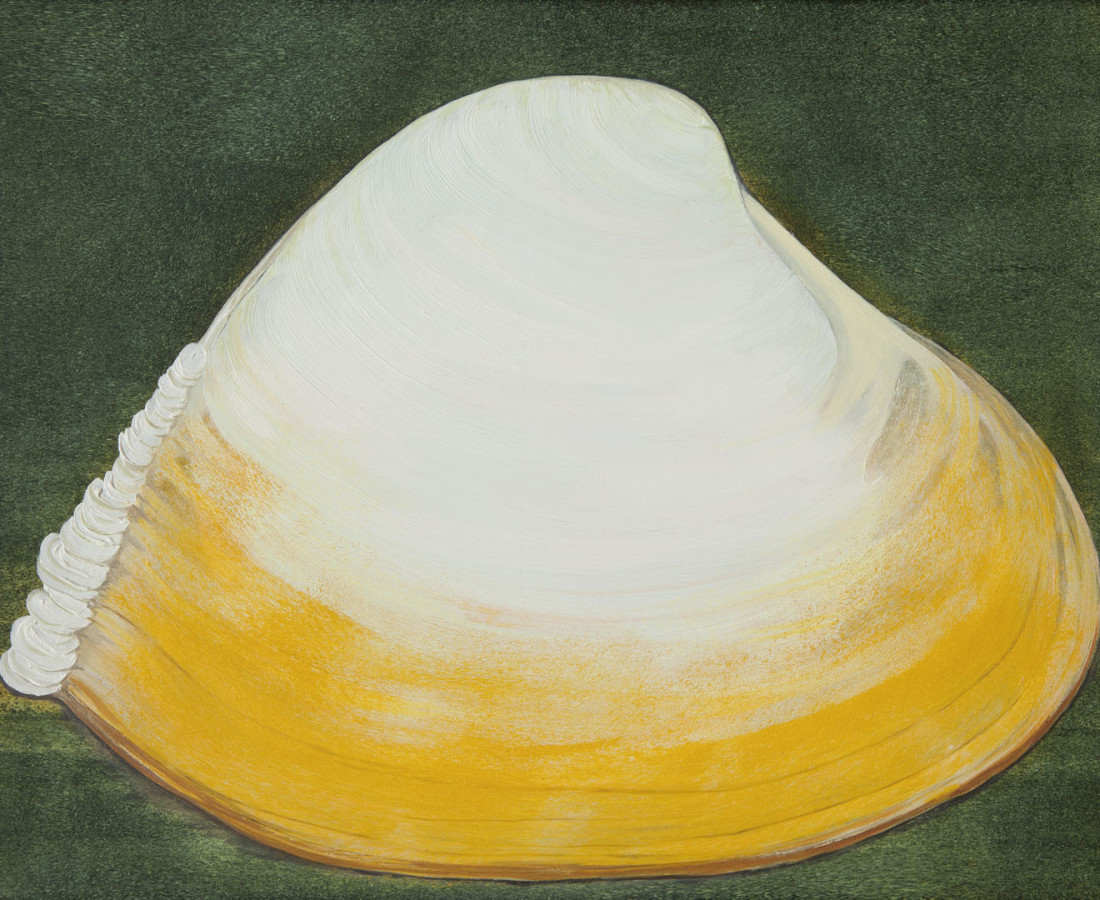 Bennie Reilly, Curled Clam