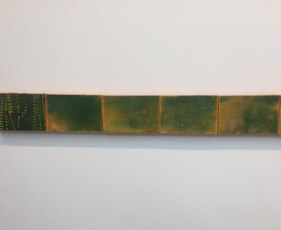 Cléa van der Grijn, Marigold Fields I