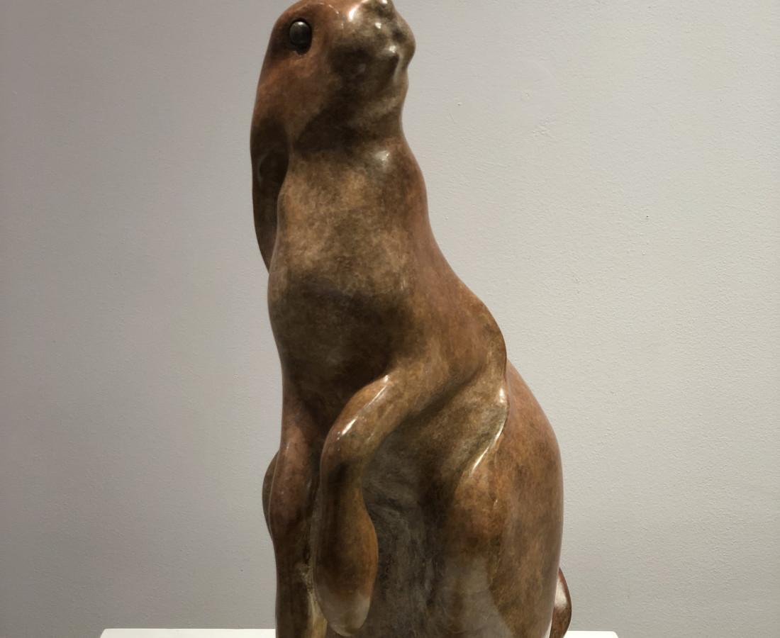 Vadim Tuzov, Hare
