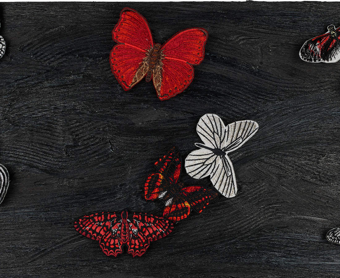 Stephen Wilson, Midnight Butterfly Study