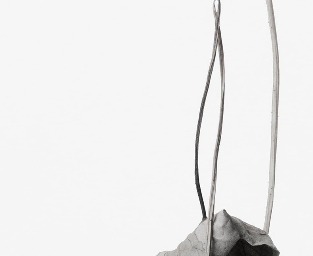 Takashi Tomo-oka, Dried Lotus 2, Karehasu, 2014