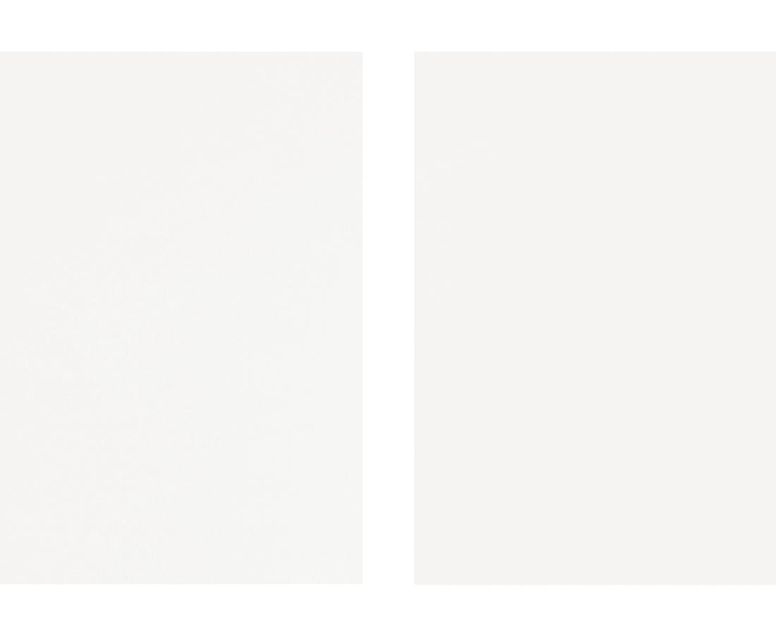 Takashi Tomo-oka, White Plum Blossom 3, Shiraume, 2014