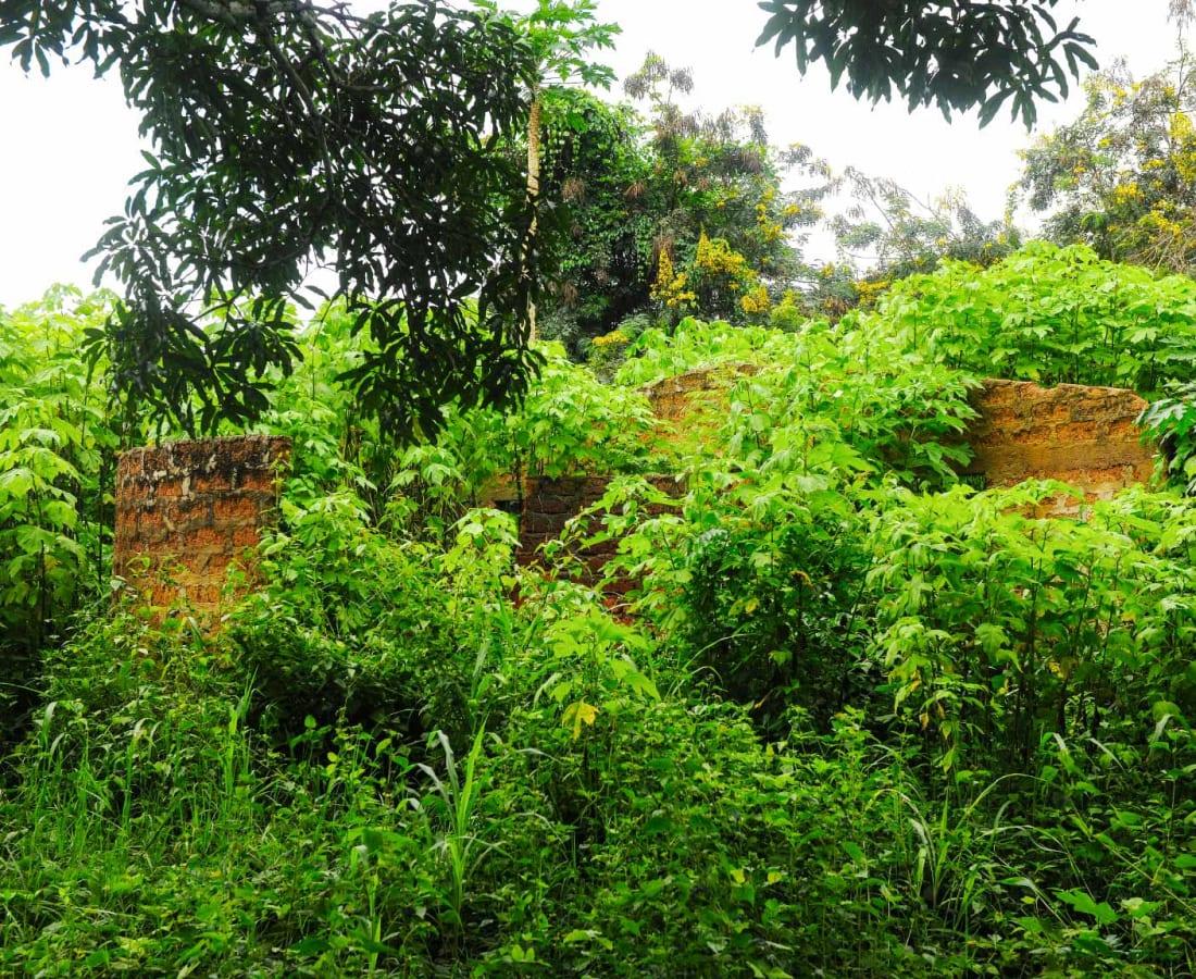 Macline Hien, Ruines #4, 2014