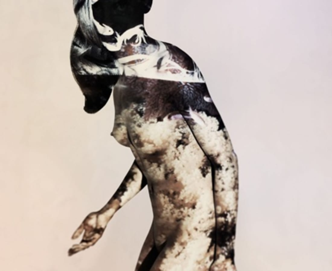 Carli Hermès, Shade