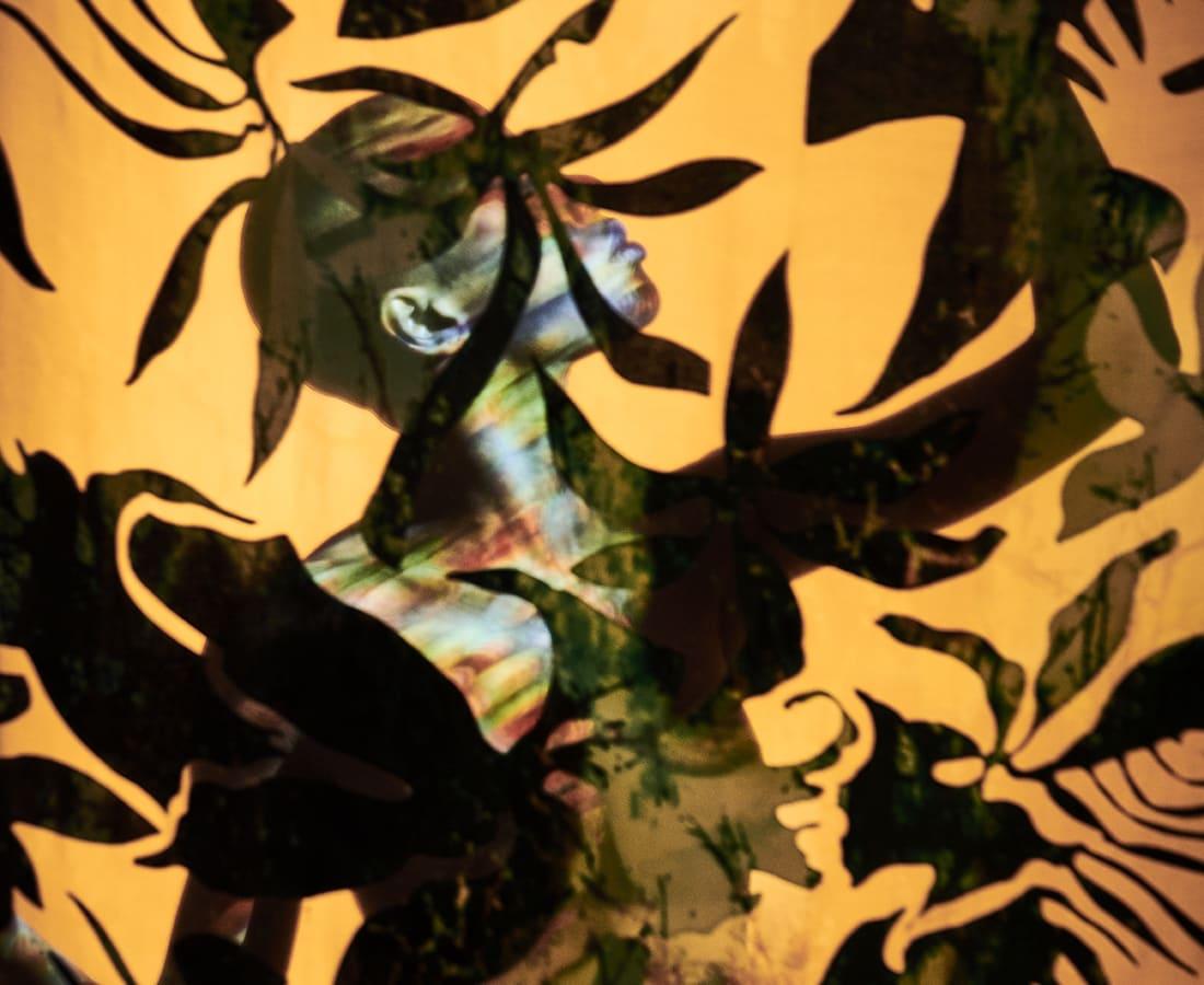 Carli Hermès, Distortion - Rabia