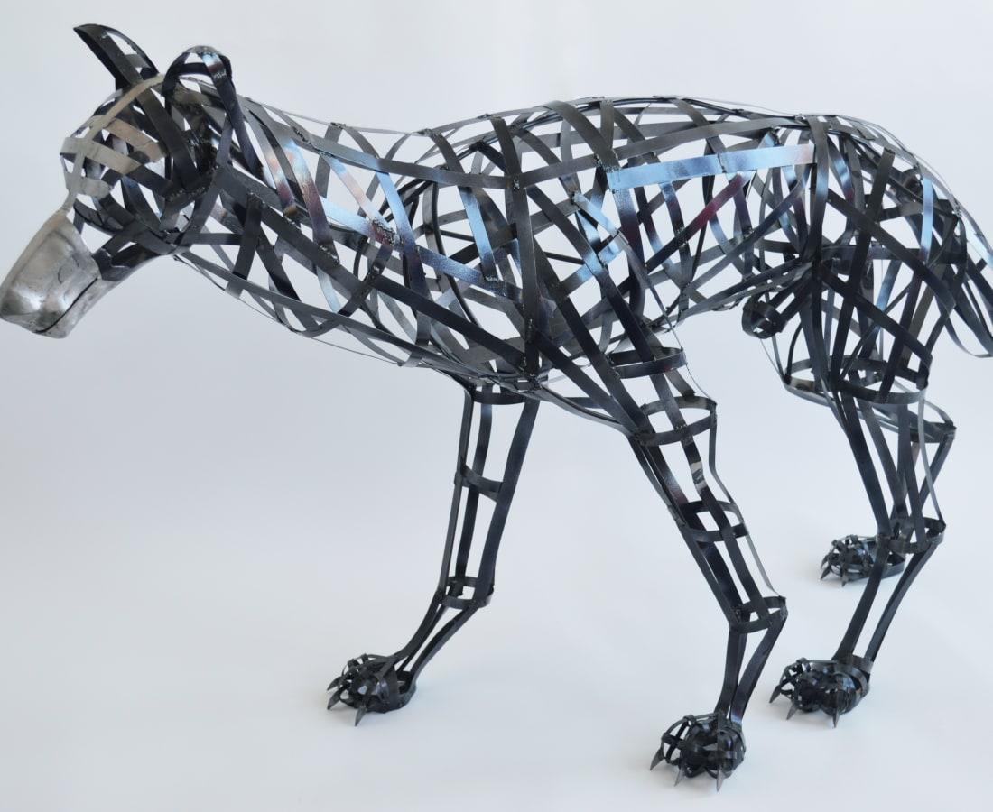 Leonie Schneider, Canis lupus