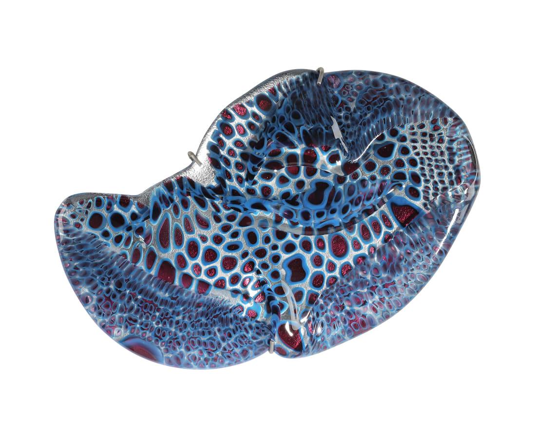 Barbara Nanning, Jellyfish