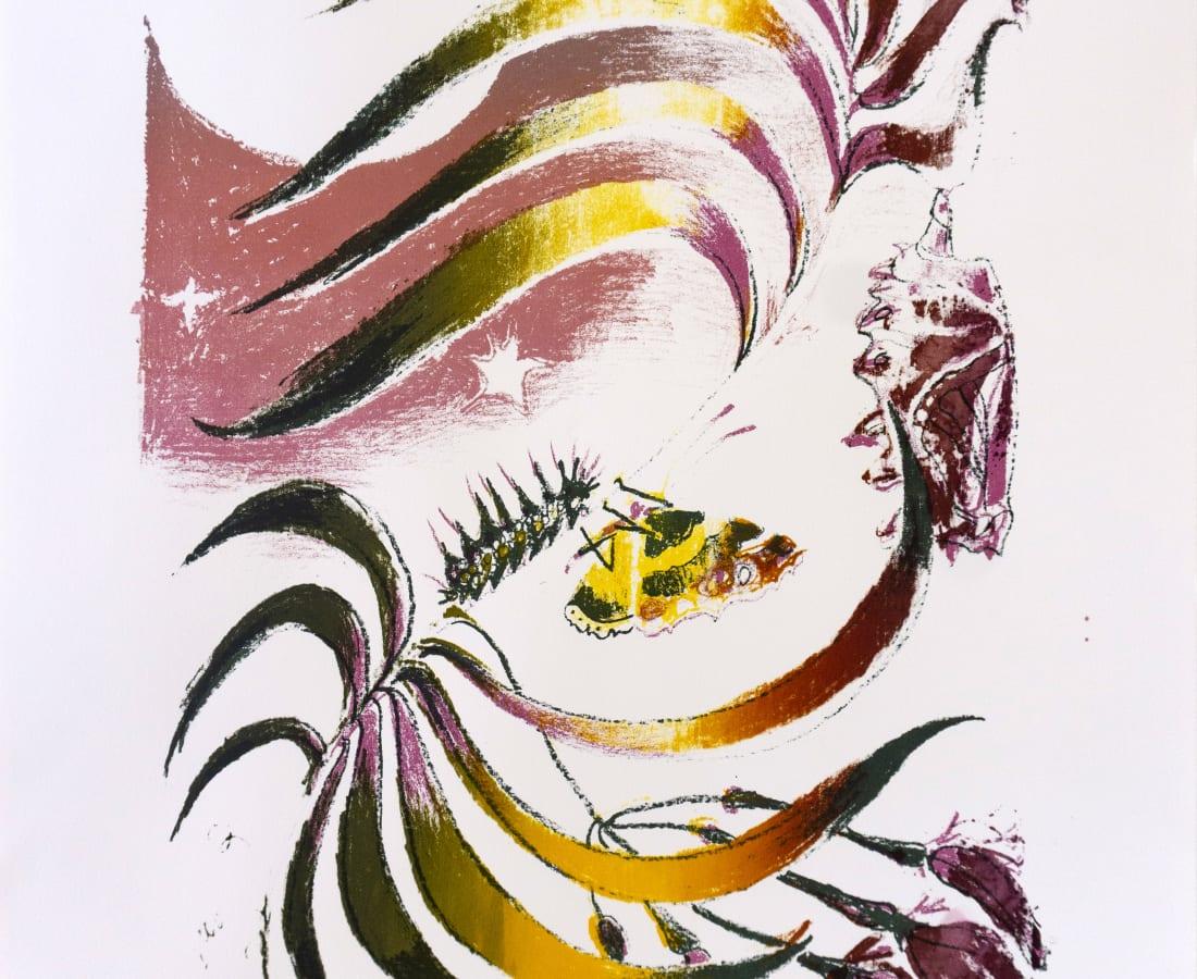 Sophie Steengracht, EDITIONS - Transfigure