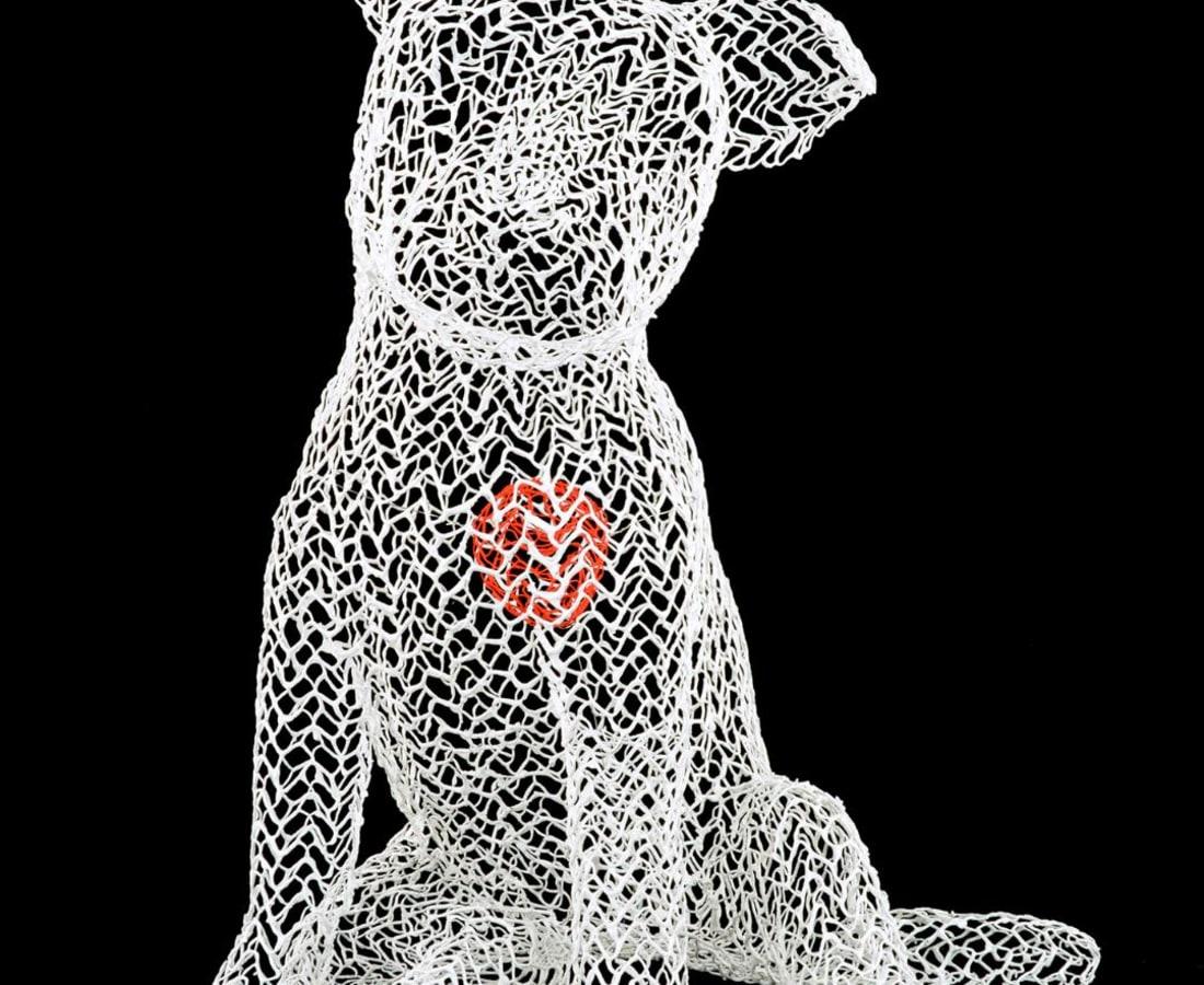 Eka Acosta, White Puppy