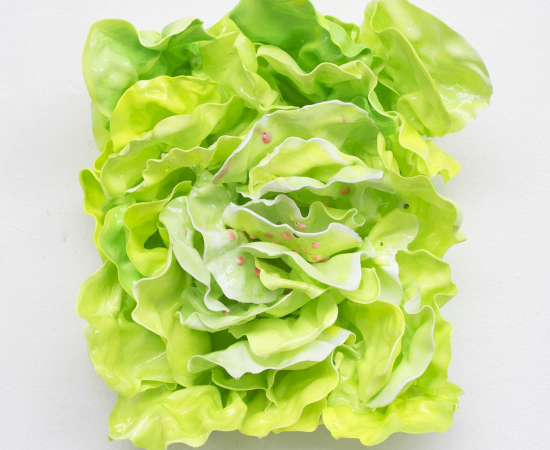 Stefan Gross, Salad