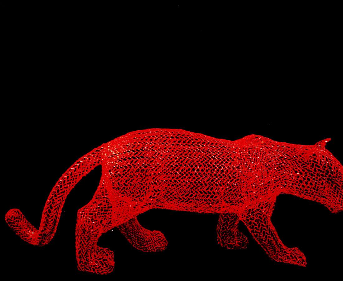 Red Jungle Cat