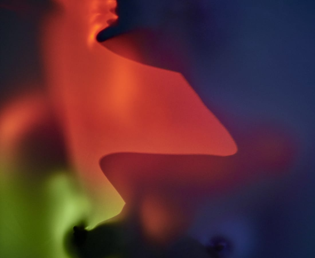 Carli Hermès, Distortion - Shade