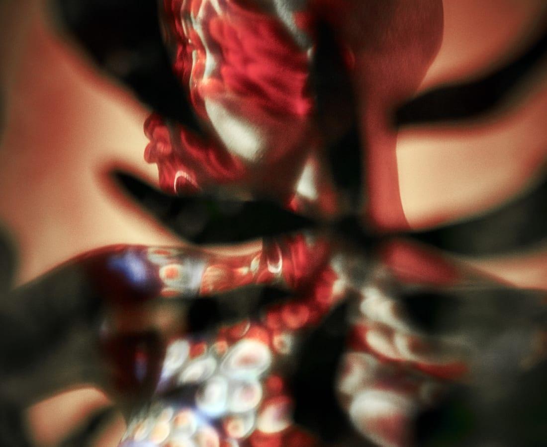 Carli Hermès, Distortion - Spotted
