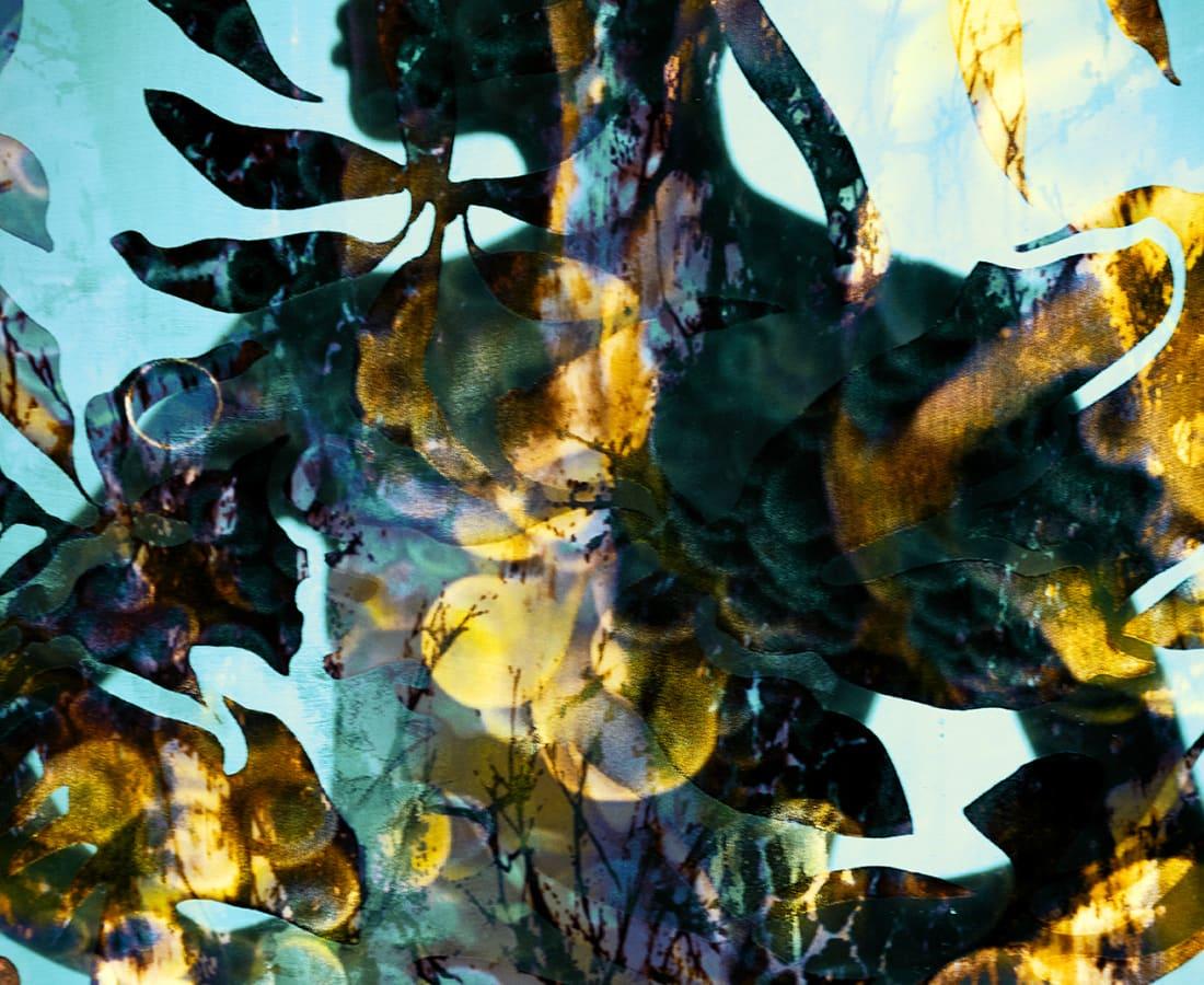 Carli Hermès, Distortion - Golden Silhouette