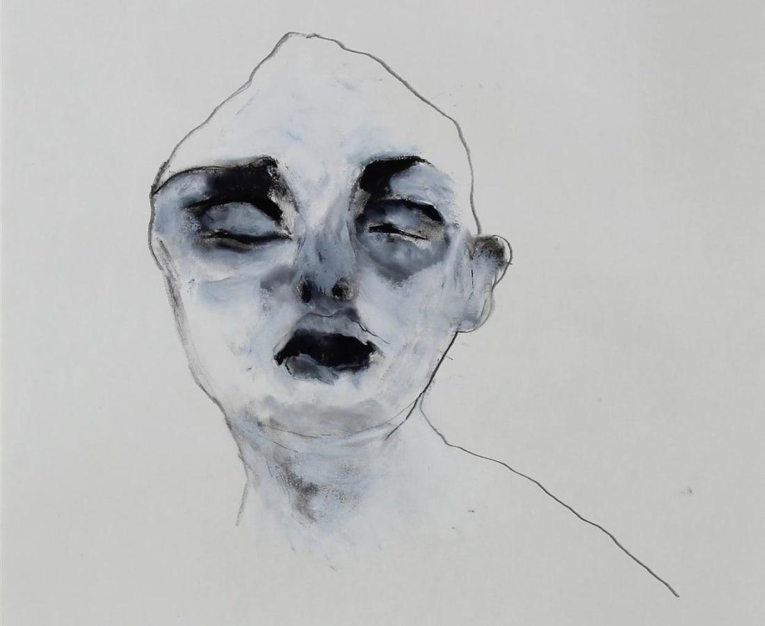 Fabienne Francotte, The Silent Friend, 2017
