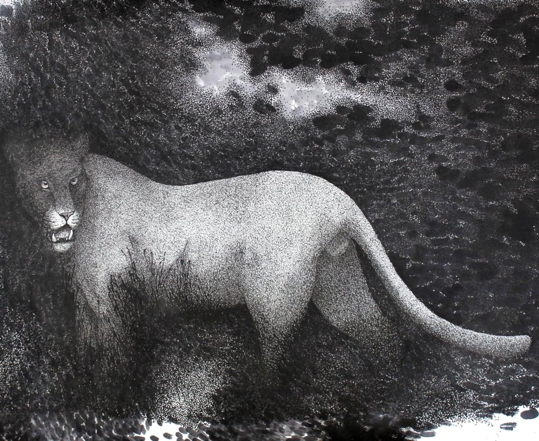 Firi Rahman, Black Leopard, 2020