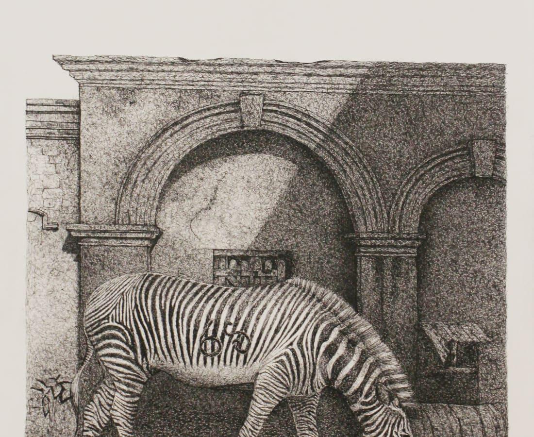 Firi Rahman, Zebra, 2018