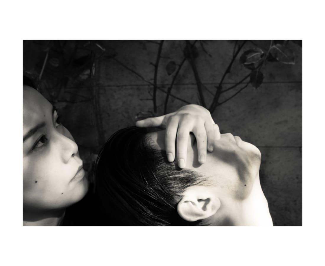 Yujie Ding, Brera Lover II, 2018