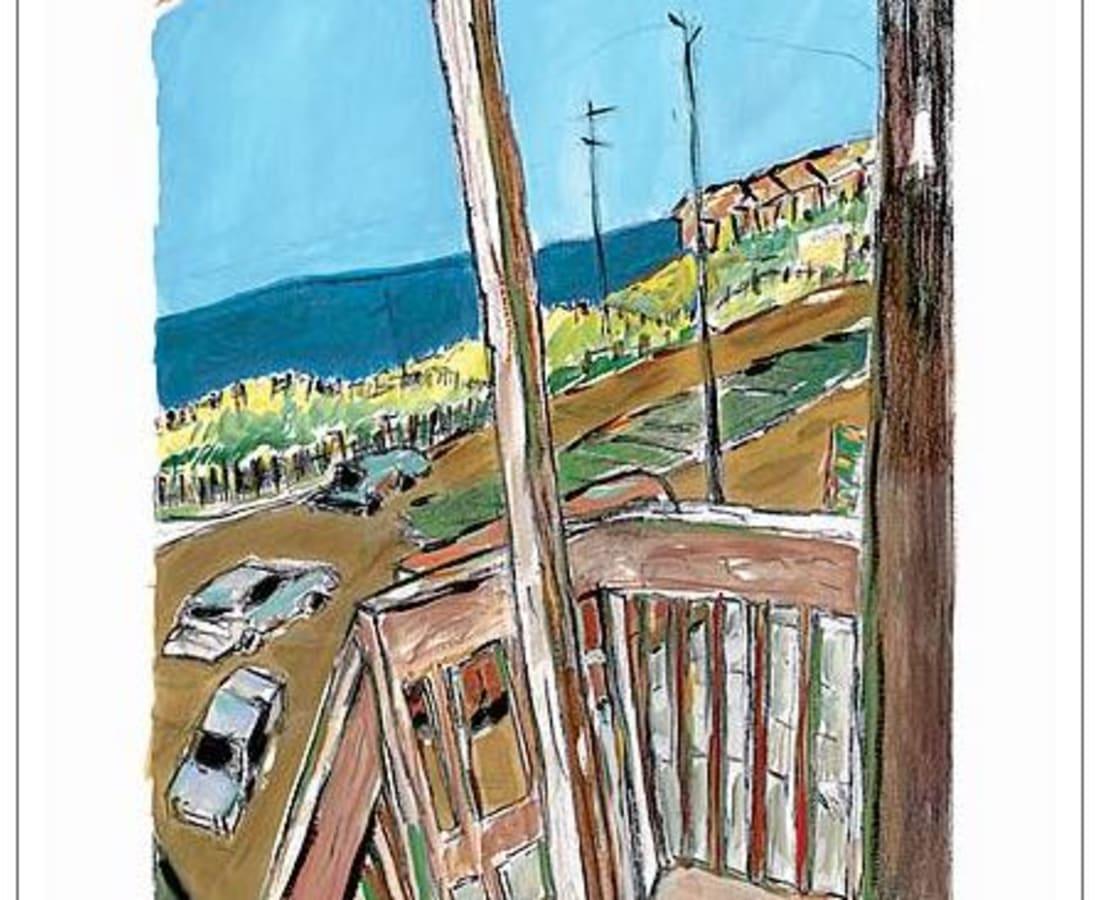 Bob Dylan, Amagansett (medium format), 2008