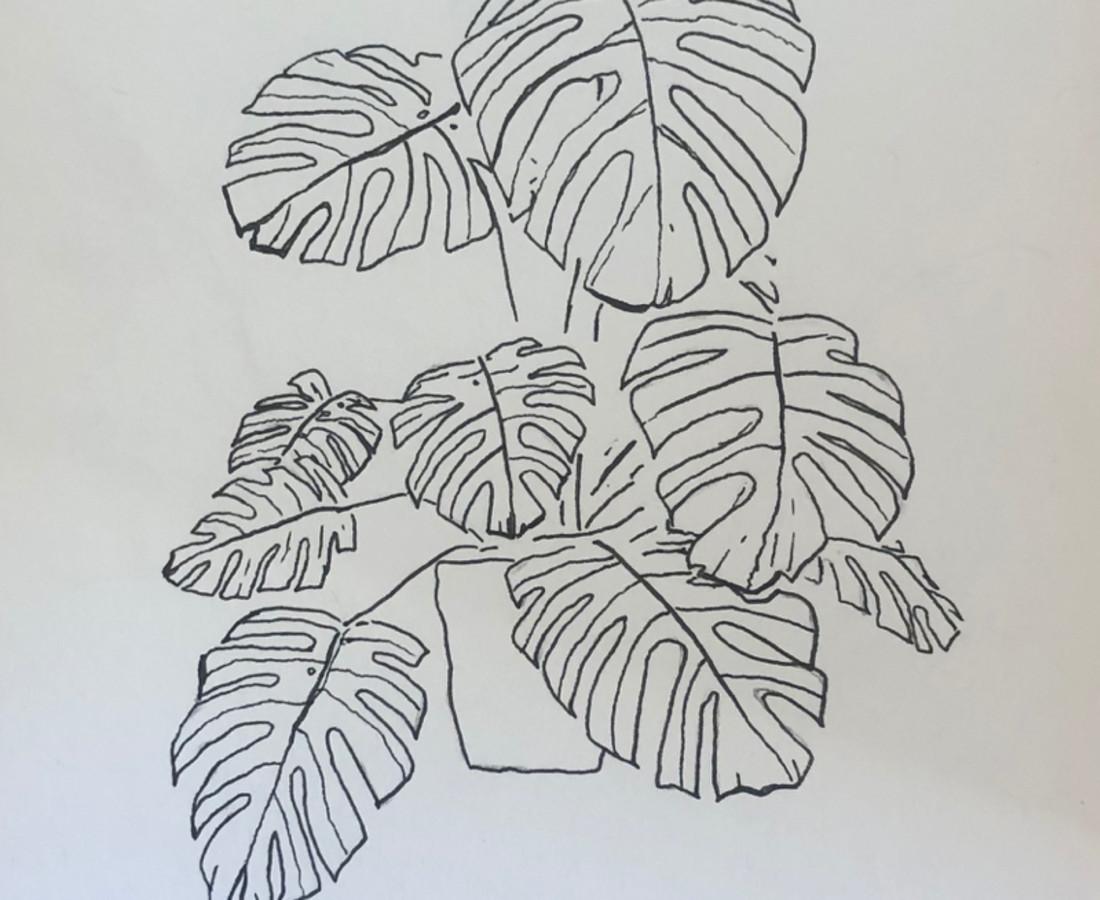 Ania Magliano Monstera plant, 2019 Pen on paper 22.6 x 17.3 cm 8 7/8 x 6 3/4 in