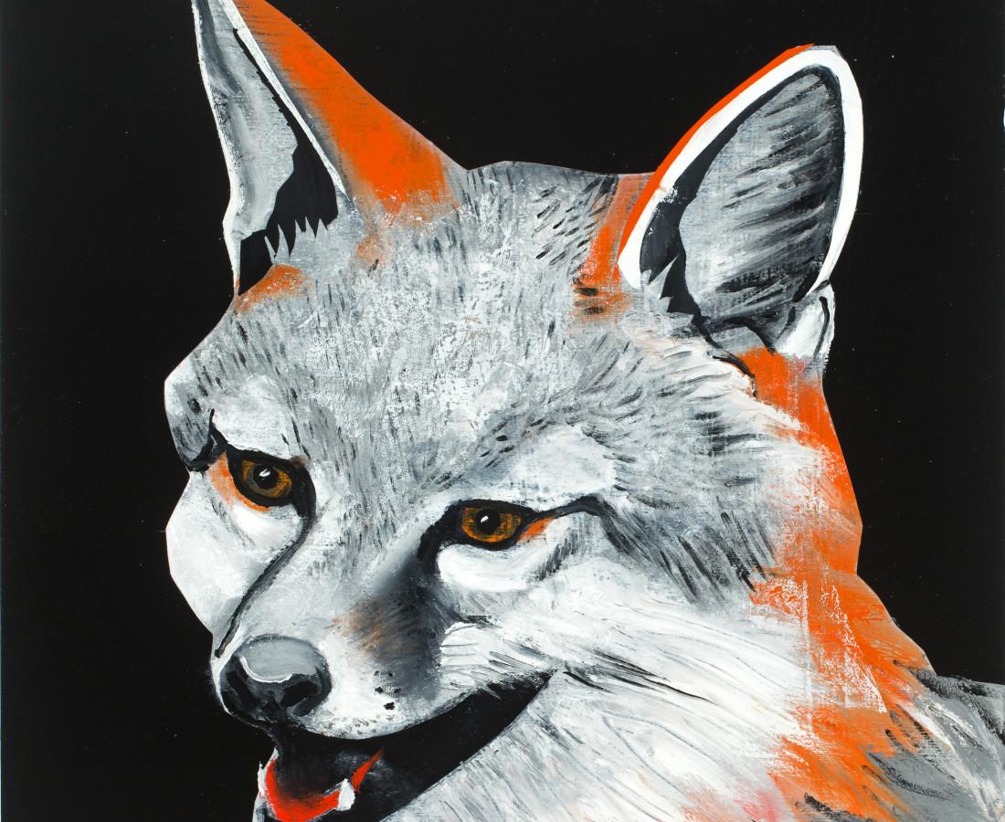 Matthew Dennison, Silver Fox, 2020