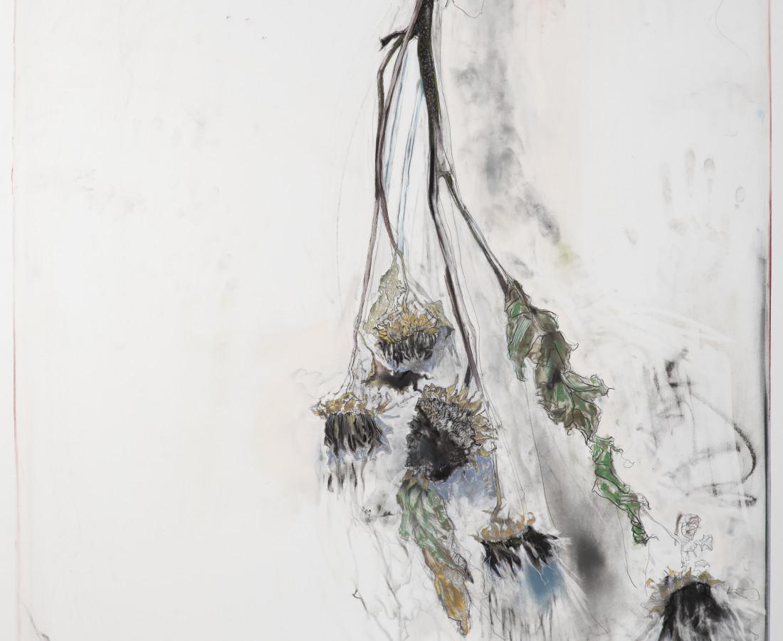 Kris Hargis, Black sunflowers of Ainsworth, 2020
