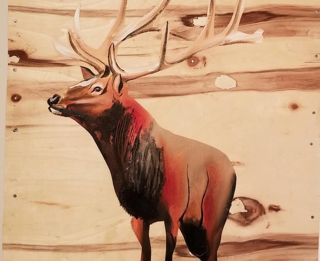 Matthew Dennison, Wapiti (Elk), 2020