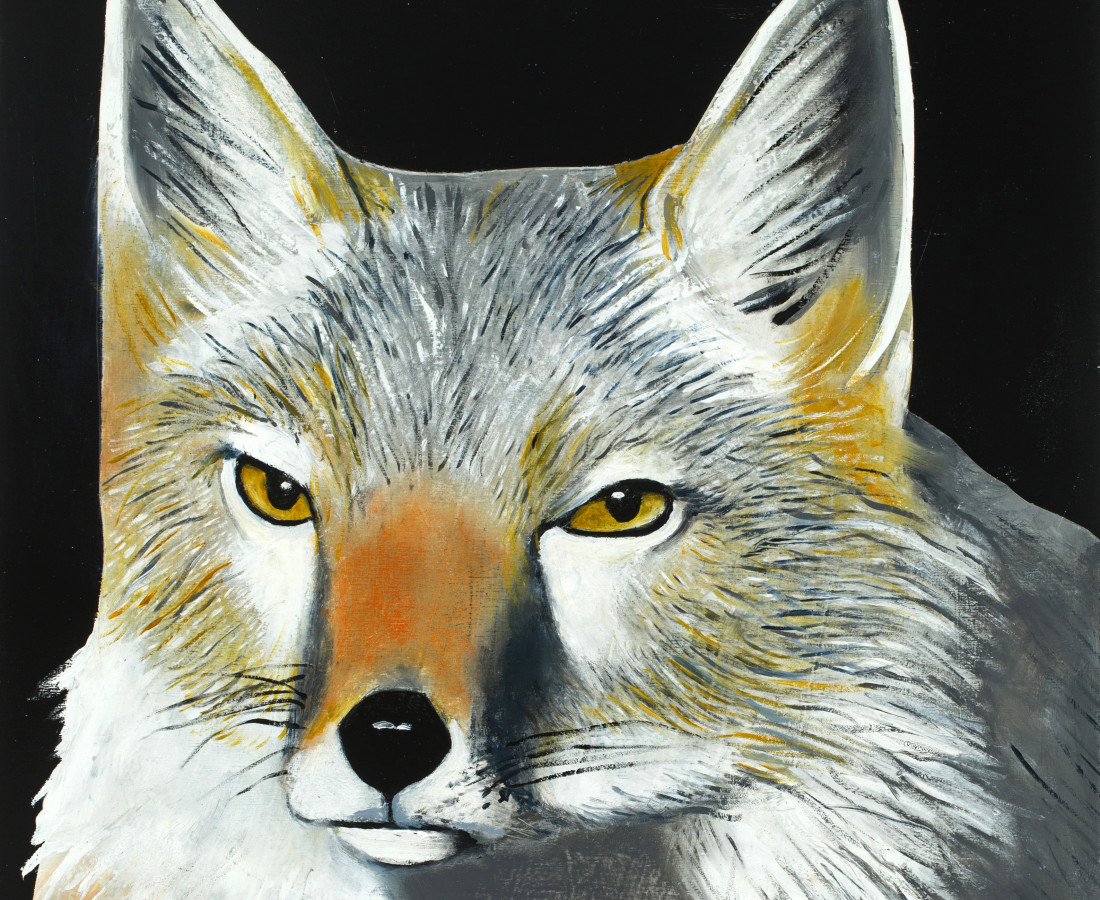 Matthew Dennison, Grey Fox, 2020