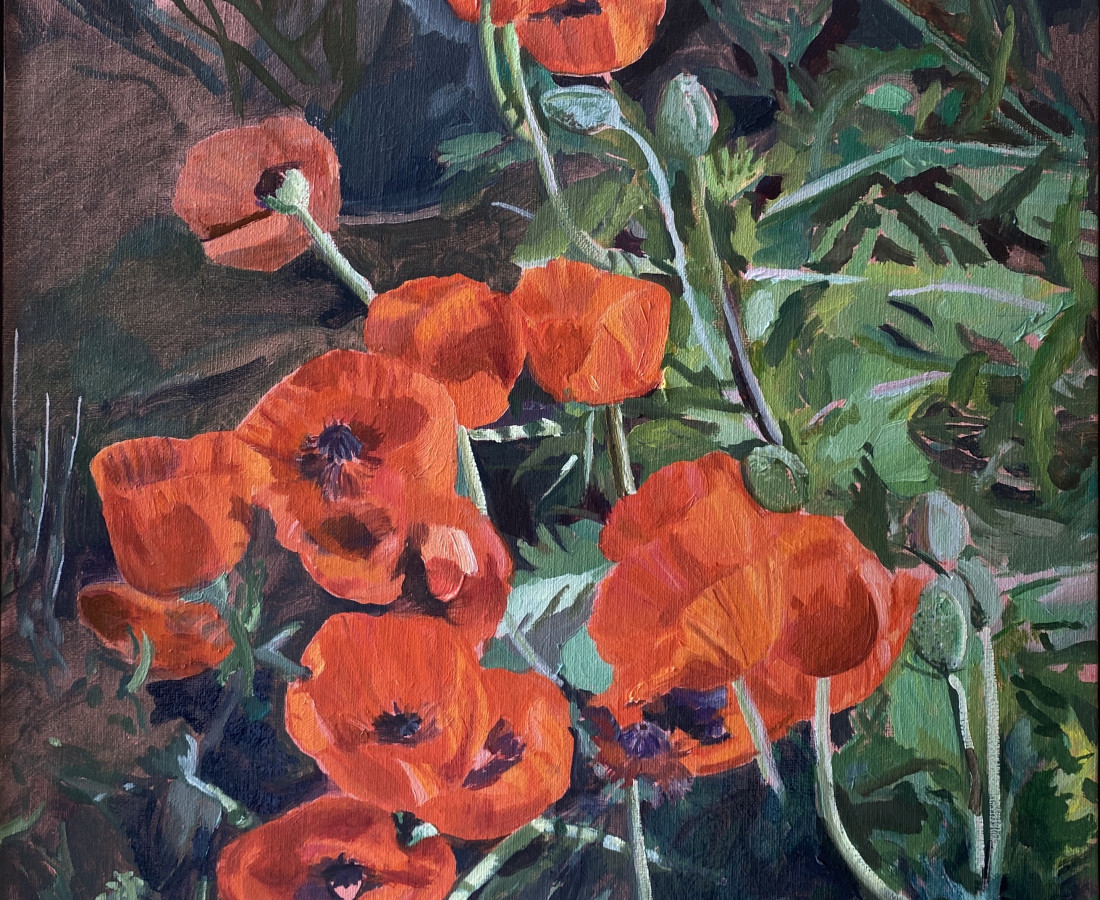 Holly Osborne, Poppies, 2020