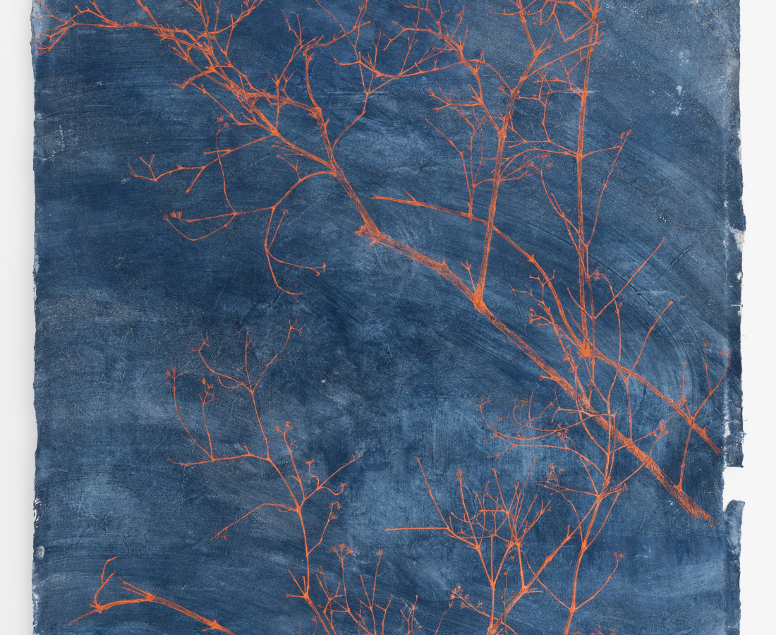 Sarah Horowitz, Vermillion Branches, 2019