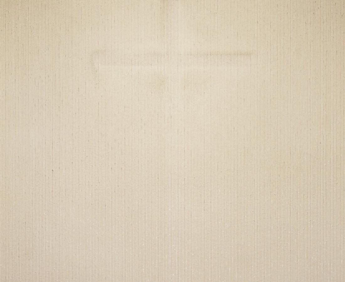 Brigitte Niedermair, Dust (VII), 2007