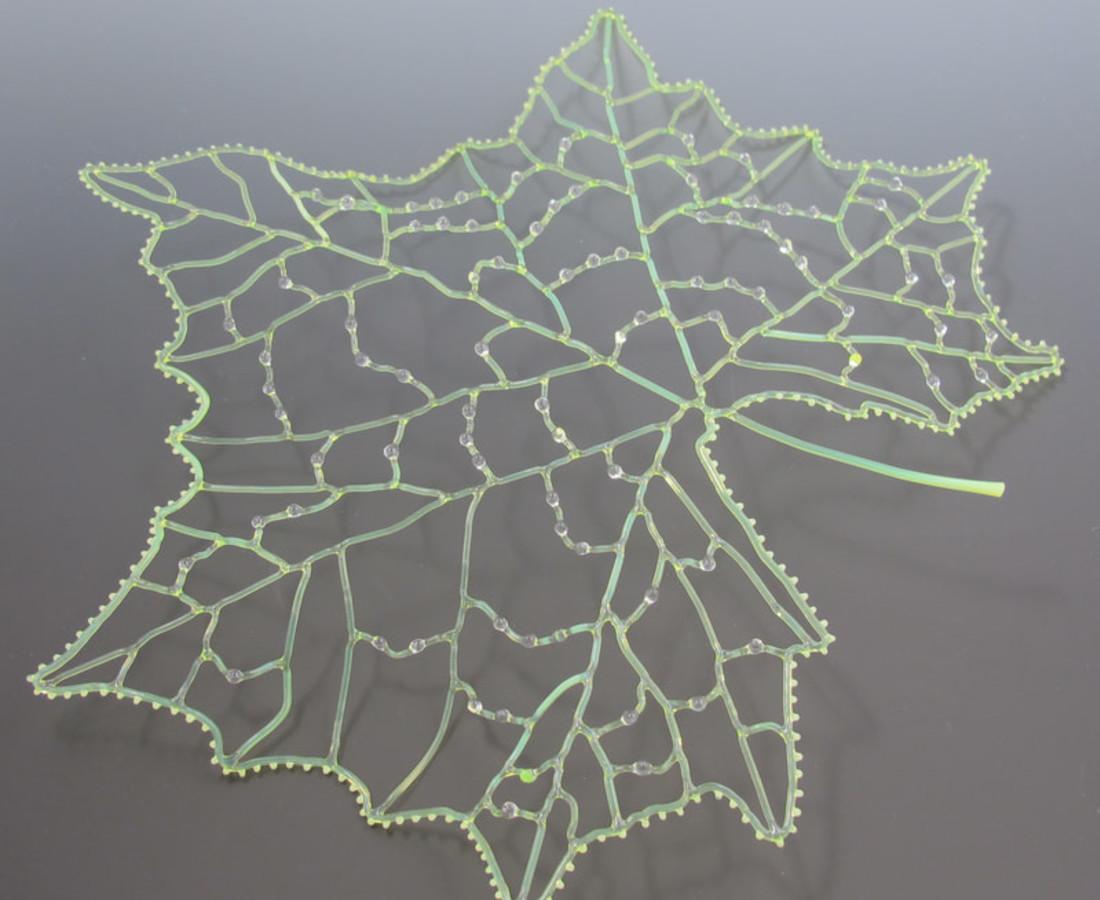 Kit Paulson, Sycamore Leaf