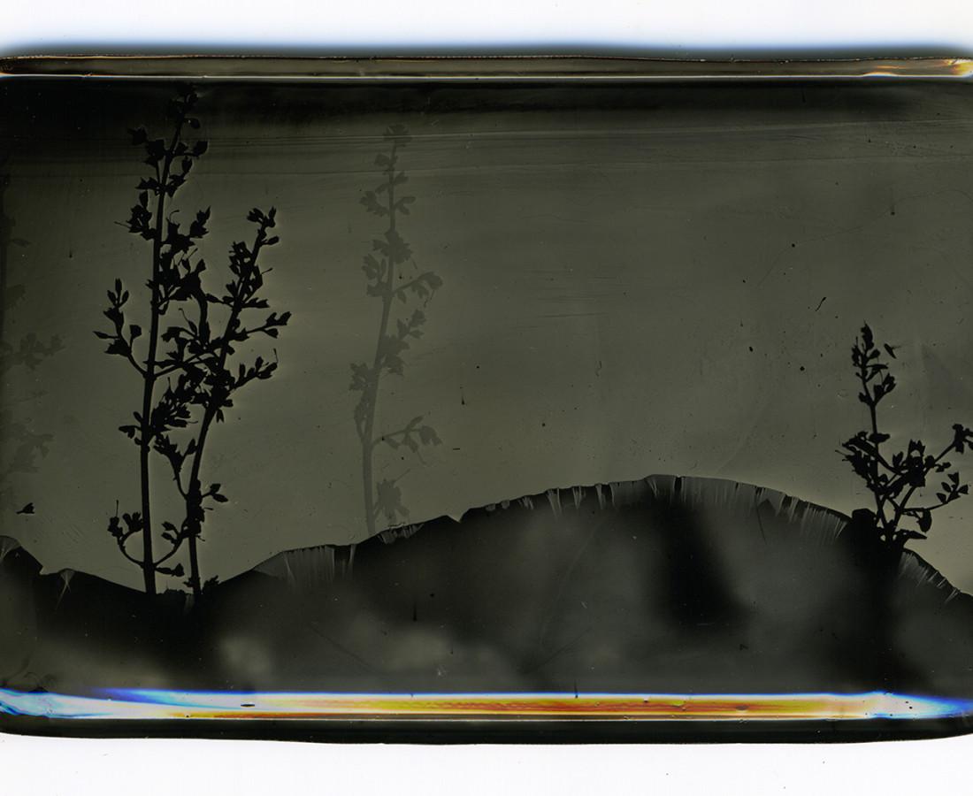 Heather F. Wetzel, Salvage: Constructed Landscape No.38