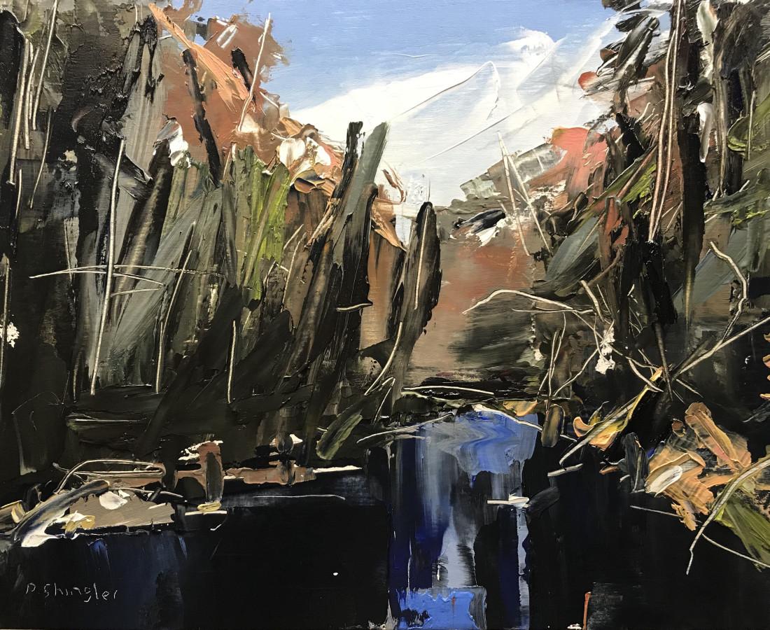 David Shingler, Linville Falls, Elkin, NC, 2018