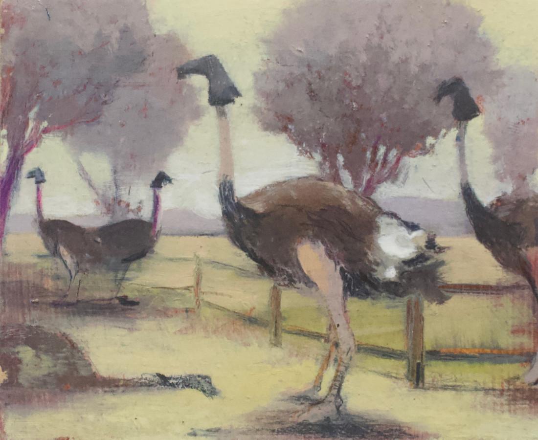 Paul Sattler, Hooded Flock