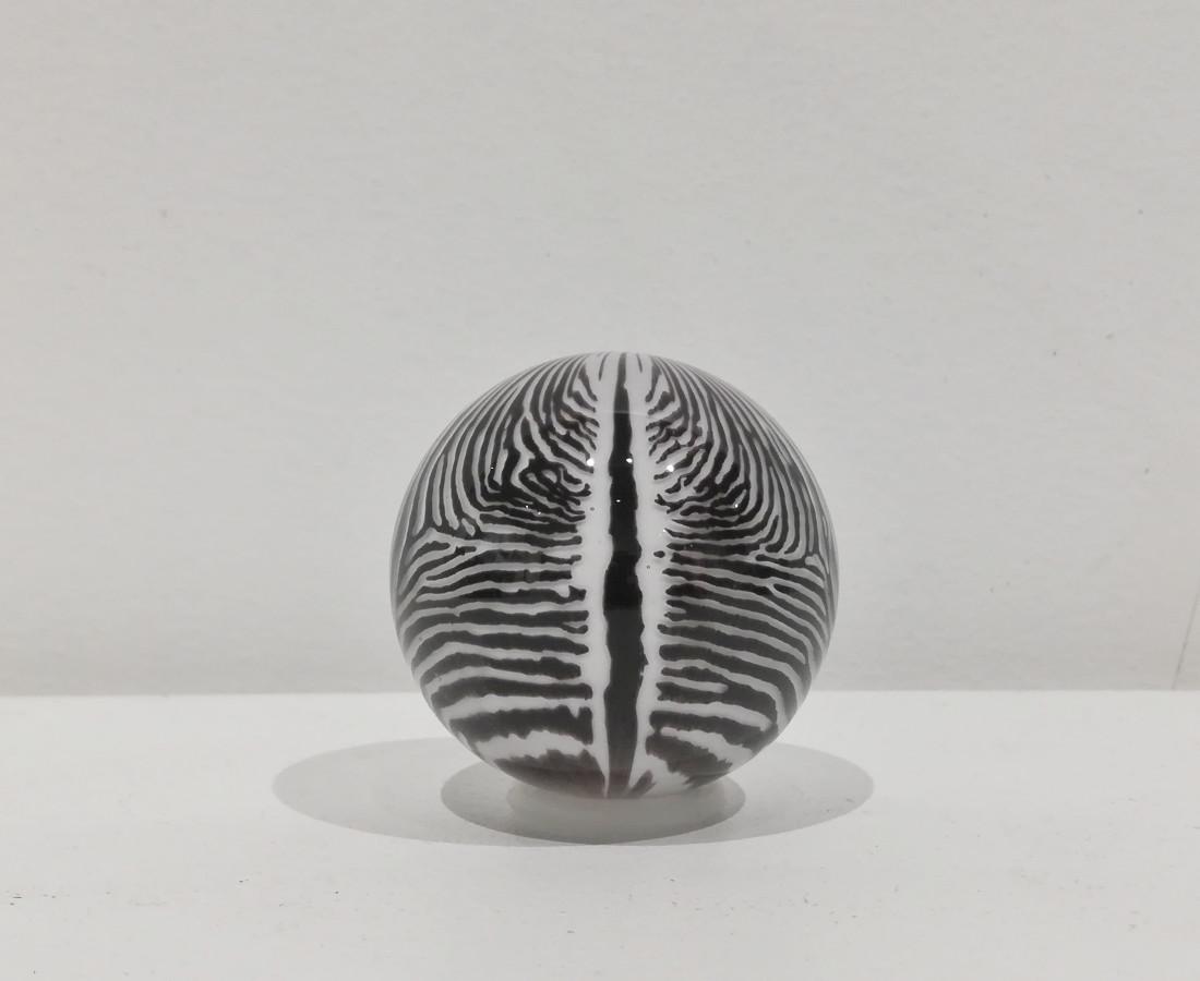 Mark Matthews, Baby Grevy's Zebra